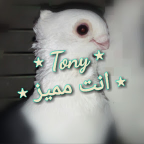 Tony انت مميز