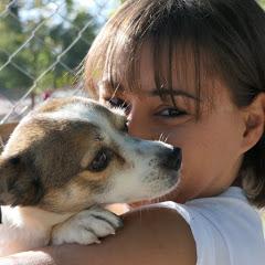 DAR Animal Rescue