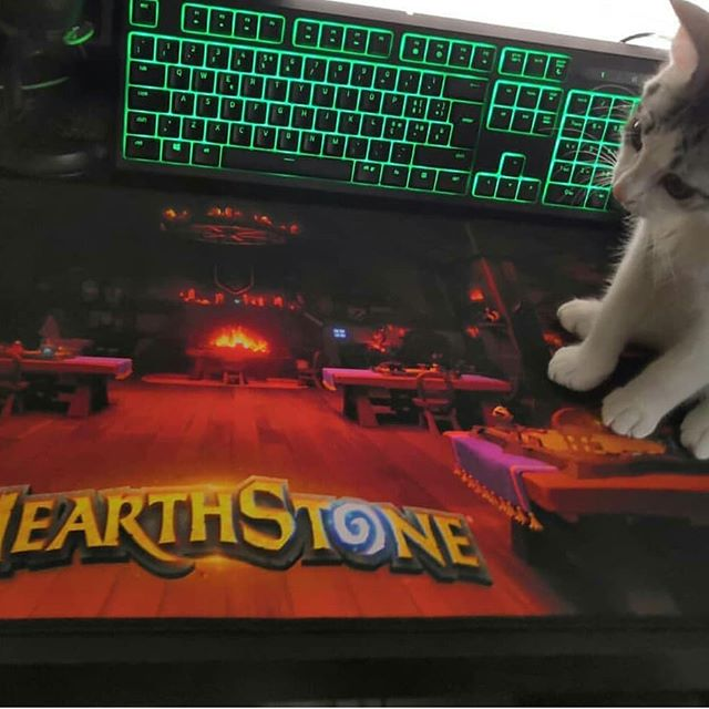 Via @poly.hs #hs #hearthstone #blizzard #gaming #gamer #game #likelike #follow