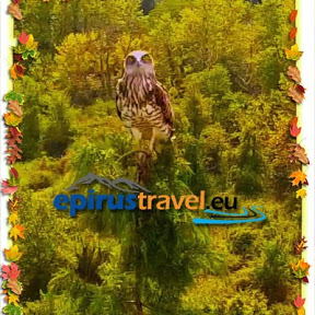 Epirustravel eu - Drone Flights