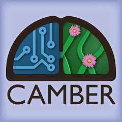 The Camber Show