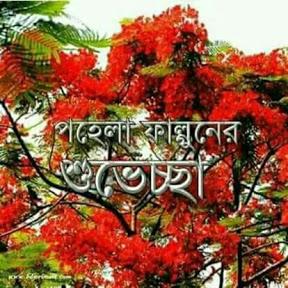 আমার দেশ My Bangladesh