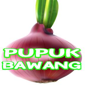 Pupuk Bawang