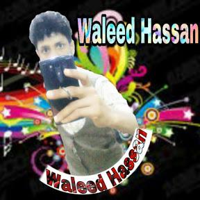 Walid Hassan Noor