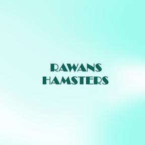 RAWAN'S HAMSTERS
