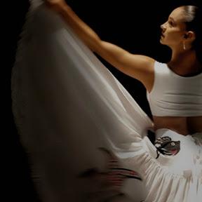 Danza y música tradicional mexicana...