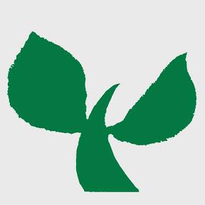 捏造慰安婦問題を糺す日本有志の会