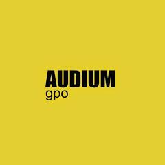Grupo Audium