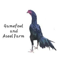 Gamefowl and Aseel Farm
