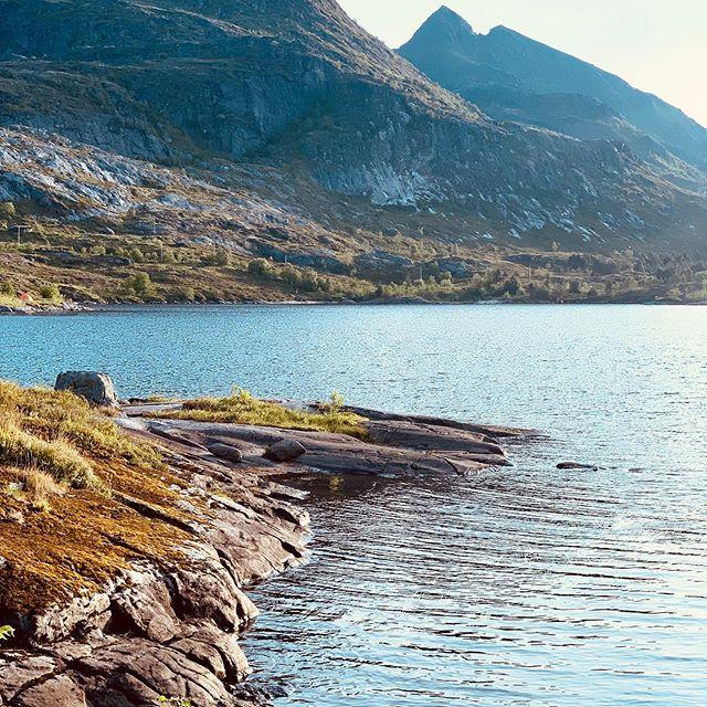 Road trip / Norvège - Norway : hiking through the Matind summit #campervan #camplife #vanlife #vanlifers #vanlifeexplorers #offroooad #roadtrip #europe #vanlifediaries #houseonwheels #rollinghome #vansofinstagram #adventuremobile #homeiswhereyouparkit #projectvanlife #vwcalifornia #westfalia #vwt3 #vwt6 #norvege #norge #norway #matind #måtinden
