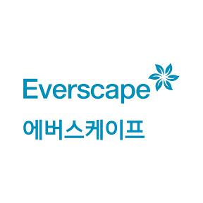 에버스케이프 [Everscape]