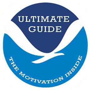 Ultimate Guide India