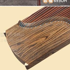 The Color of Guzheng - Guzheng Nhiên Trung