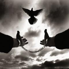 Freedom Thailand