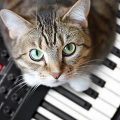 Klaudia Muzyczna
