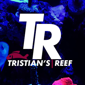 Tristian's Reef