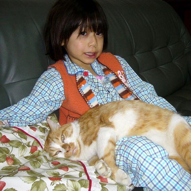 茶太郎とソラ君 ともに6才 元気盛ん 2007.12.14  #茶白猫茶太郎♂ #子供の膝に乗る猫 #6才男子ソラ君