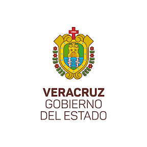 Veracruz, Gobierno del Estado