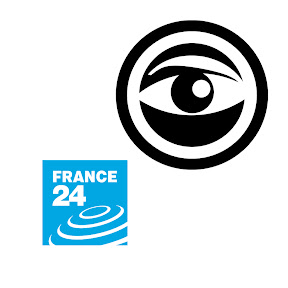 The France 24 Observers