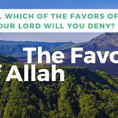 The Favors Of Allah