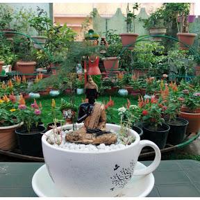 My beautiful rooftop garden N.G