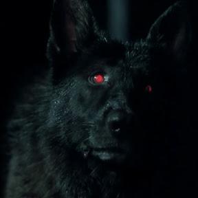 Doom Dog Films