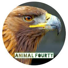 animal fourty_40