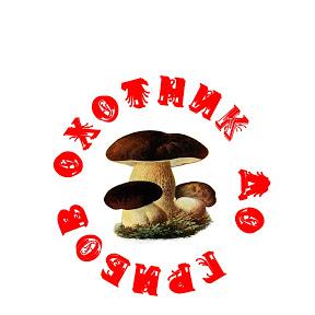 mushroom-life