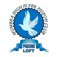 AFZAL KHAN INDIAN HF PIGEONS CLUB