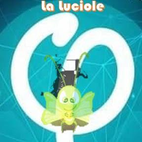 La Luciole M