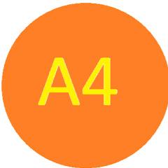 A8 03