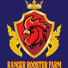 Ranger Rooster