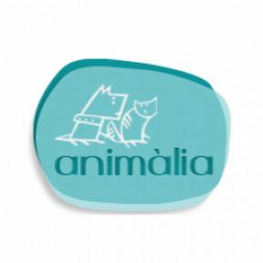 Animalia Barcelona
