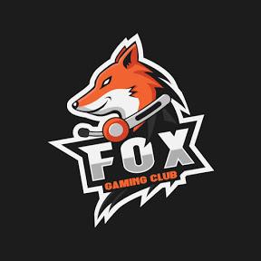 Mr. Clean Fox