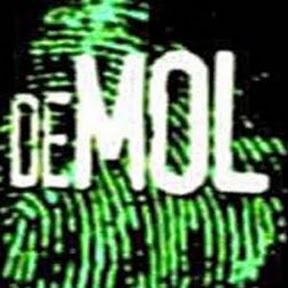 De Vlaamse Mol