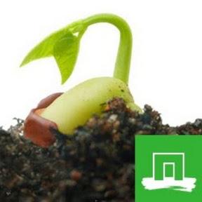 Wageningen Plant Research