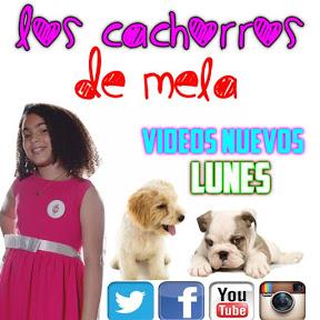Los Cachorros De Mela