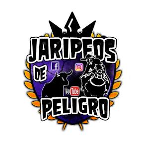 JARIPEOS DE PELIGRO GTO Y MICH