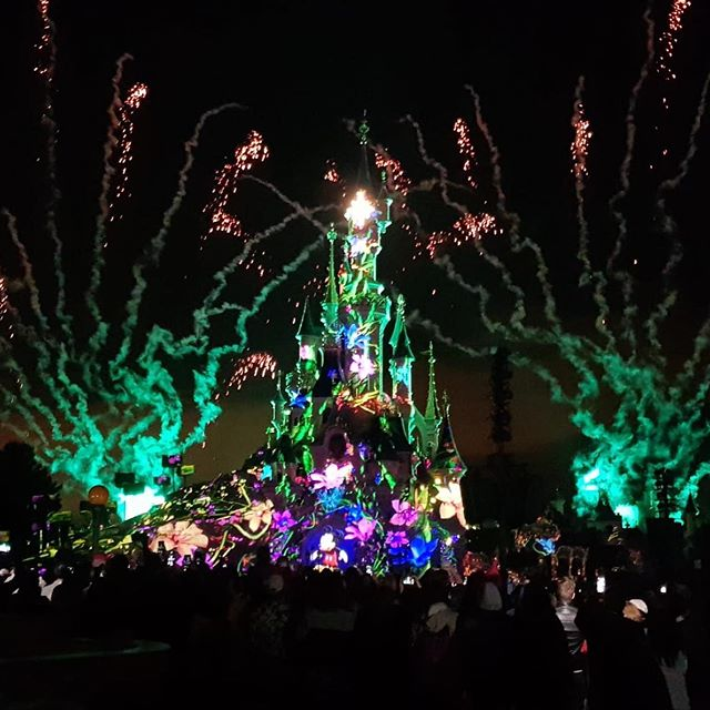 What i wouldn't give to have this view right now... can you believe my parents sat for 2 hours on a bench to get this view 😍 #disneylandparis #disneylandparis2019 #disneyland #disney #fireworks #disneyfireworks #disneyilluminations #disneyatnightmagic #disneymagic #disneylove #disneylife #disneyinsta
