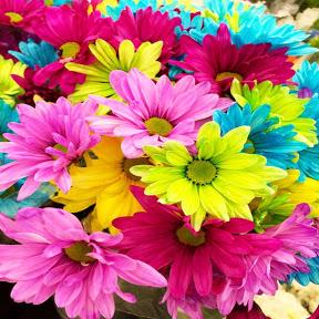 Bunga Ajaib