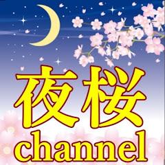 夜桜ちゃんねる