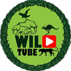 The Wild Tube