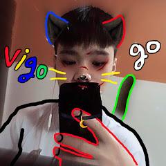Vigo go