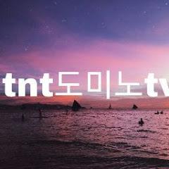 tnt 도미노 tv