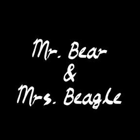 곰선생과비글이