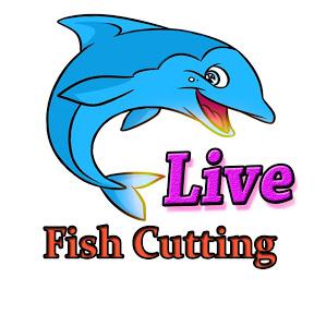 Live Fish Cutting