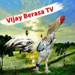 VIJAY BERASA TV
