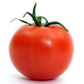 Tomaten t
