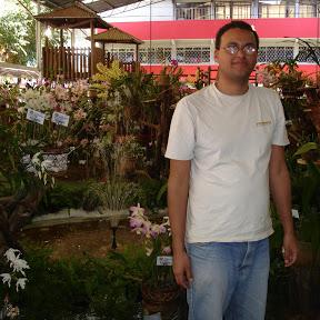 Plantas Sem Mistério Andrew Fogtman