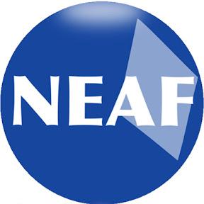 NEAF Concursos